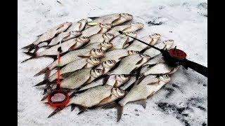 Настроились на окуня , нарвались на подлещика. Зимняя рыбалка в палатке 2018.
