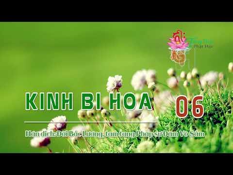 Kinh Bi Hoa -6