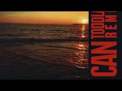 Chronixx, Avelino & Toddla T – I Can (Toddla T Remix) [iTunes]