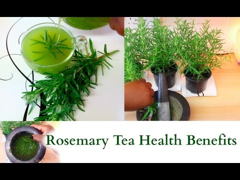 Video How To Make Rosemary Tea from Fresh Herbs Health Benefits Relaxing and Healing