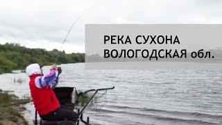 Свежие отчеты по рыбалке в вологде