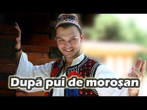 Ionica Morosanu – Dupa pui de morosan Video