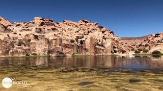 Abenteuer 100 Tage Südamerika: Aus der Nähe die Laguna Negra Bolivien