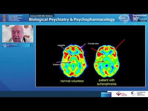 Buchsbaum M. S. - Update on brain imaging in schizophrenia