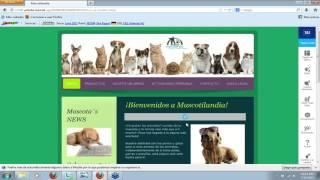 Webinar 1&1 Mi Web: Conceptos básicos para principiantes