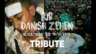 Danish Zehen Last Video | Danish Zehen death in car accident