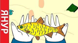 ЯНУР - Золотая рыбка
