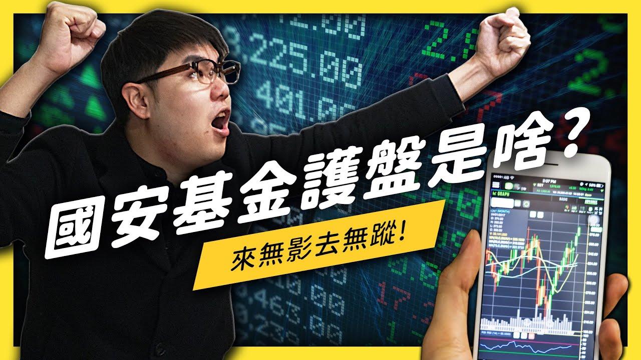 第七次進場護盤的「國安基金」到底是什麼?股市暴跌就要政府買單嗎?《 生難字彙大辭海 》 EP 032| 志祺七七