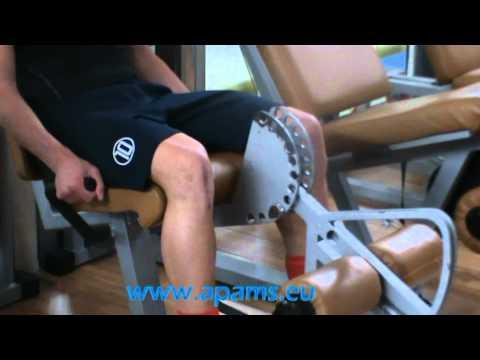 Intorno al fluido ginocchio