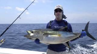 Tuna Tagging Project at PSFL