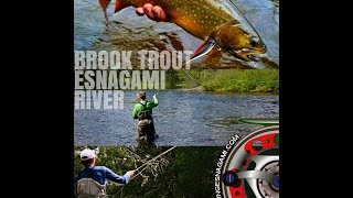 2015 Brook Trout Fishing a Esnagami Lodge part #1