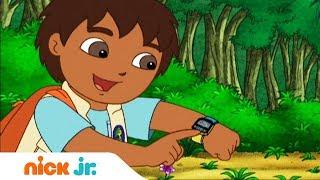 Гоу, Диего, Гоу! | Поиски ламы | Nickelodeon