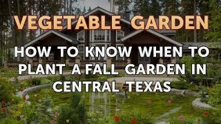 How to Know When To Plant A Fall Garden In Central Texas