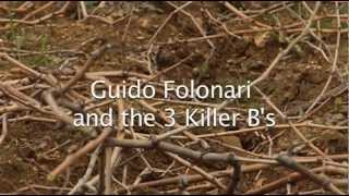 Guido Folonari and the 3 Killer B