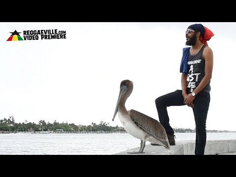 Survivor Slim - Be Calm [Official Video 2018]