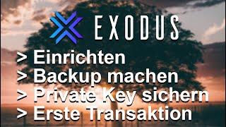 Wie kann ich BTC von Exodus abheben?