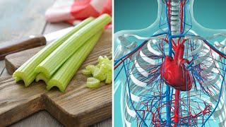 5 Sposobów na słabe krążenie krwi – TYLKO naturalne składniki