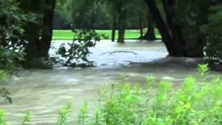 preview picture of video 'Fleetwood Park/Etobicoke Creek Flooding'