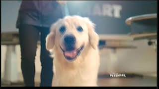 PetSmart Commercial with Runway Pets