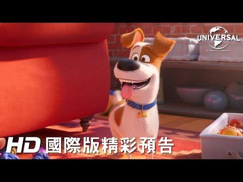 「福伯」哈里遜福特加入配音陣容!《寵物當家 2》首支前導預告登場