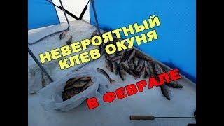 Рыбалка в конце февраля на окуня