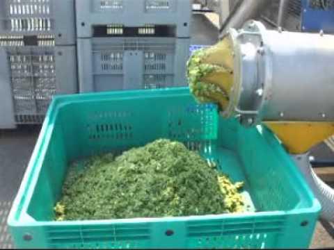 Triturador de verduras