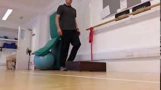 Poor Balance? Falling more frequently? Reduced Strength in your Lower Limbs?