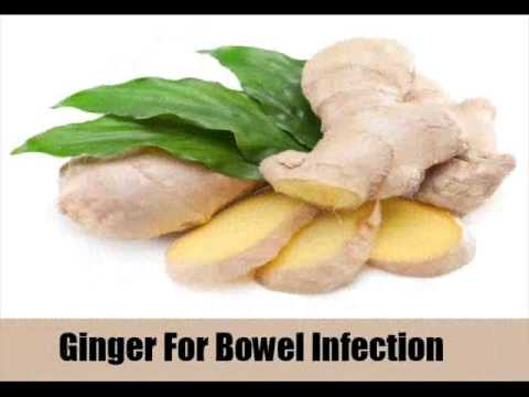 Video 8 Best Home Remedies For Bowel Infection