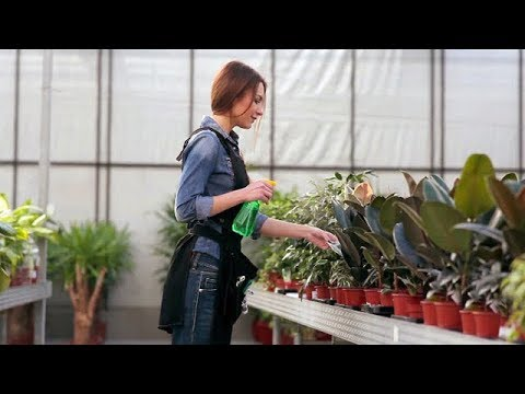 Horticulture video thumbnail