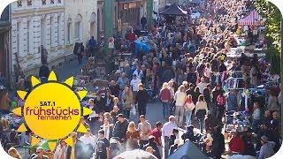 Der größte 1-Tages Flohmarkt der Welt | SAT.1 Frühstücksfernsehen