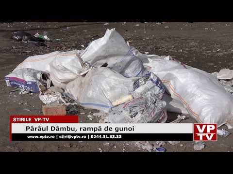 Pârâul Dâmbu, rampă de gunoi