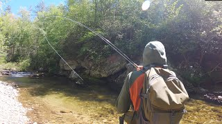 Small Stream Fly Fishing At Its FINEST   A GoPro Film
