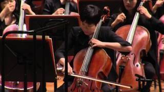 P. I.  Tchaikovsky 'Swan Lake' Suite