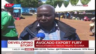 Avocado farmers decry stringent rules as they call for regulations to be reviewed