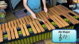 PERCUSSION: One octave scales with Dinesh Joseph
