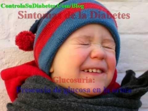Sopa de hongos con la diabetes