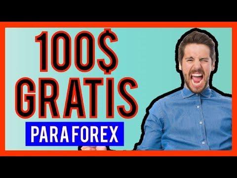 Trading su forex funziona