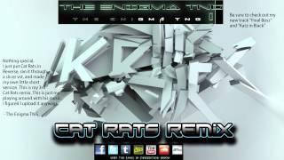 Skrillex - Cat Rats (The Enigma TNG Remix)