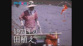 1973年 田植え【なつかしが】