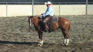Cutting Horse Training Problems, 3-yr-old, Part 4 - Mechanical Cow