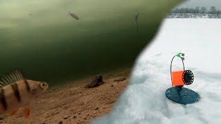 Поклёвка щуки на жерлицы подводная съёмка.