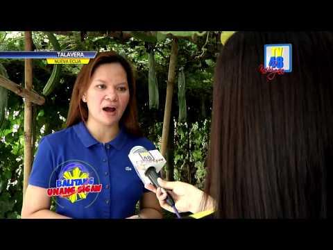 Ano ang mga bulate sa mga tao sa mga larawan