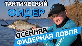 Правильная рыбалка на фидер леща осенью
