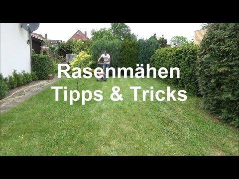 Rasen mähen Wie mäht man den Rasen Rasenmähen Tipps und Tricks