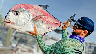 How to Clean and Cook a GIANT African Pompano