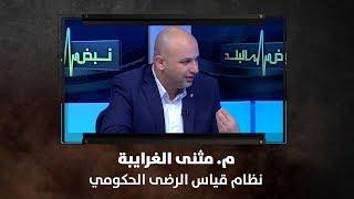 م. مثنى الغرايبة - نظام قياس الرضى الحكومي - نبض البلد