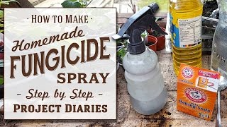 ★ How to: Make Cheap Homemade Fungicide (Complete Step by Step Guide)