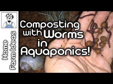 Kung paano makilala ang isang kuting worm