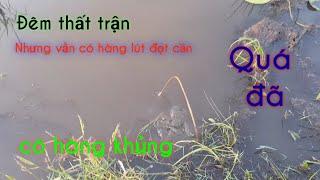 Cắm Câu Cá Lóc đầu Mùa Lũ Ll Tập 4 Ll Fishing In Việt Nam