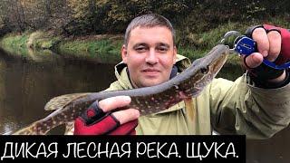 Озера псковской области для рыбалки карта реки и